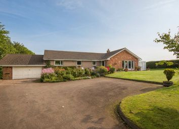 Thumbnail 4 bed detached bungalow for sale in Ogle Lodge, Thurston Mains, Innerwick, Dunbar