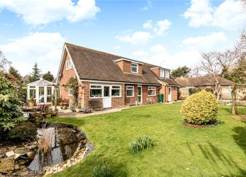 Thumbnail 4 bedroom detached house for sale in Mill Lane, Fishbourne, Chichester, West Sussex