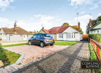 Thumbnail 2 bed semi-detached bungalow for sale in Azalea Avenue, Wickford, Essex
