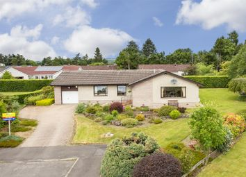 Thumbnail 3 bed detached bungalow for sale in Clunymore Drive, Blairgowrie