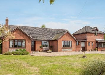 Thumbnail 4 bed detached bungalow for sale in Milestone Lane, Wicklewood, Wymondham