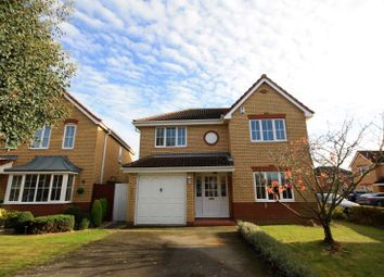 Thumbnail 4 bedroom detached house to rent in Cherry Blossom, Ipswich, Suffolk