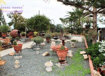 Thumbnail 3 bed bungalow for sale in Mazotos, Larnaca, Cyprus