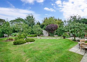 Thumbnail 3 bed detached bungalow for sale in Honey Lane, Otham, Maidstone, Kent