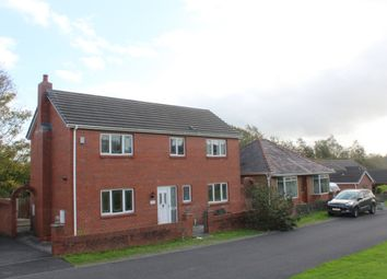 Thumbnail 3 bed detached house to rent in Cae Terrace, Llanelli