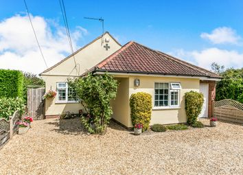 Thumbnail 3 bedroom detached bungalow for sale in Rowhedge Road, Colchester