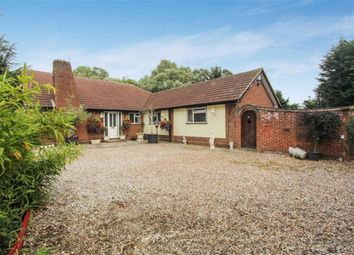 Thumbnail 3 bed detached bungalow for sale in Latchingdon Road, Cold Norton, Essex