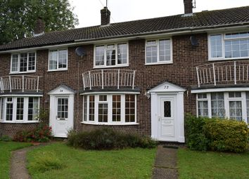 Thumbnail 3 bed terraced house to rent in Malvern Road, Cherry Hinton, Cambridge