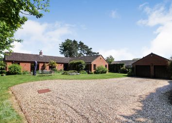 Thumbnail 4 bed detached bungalow for sale in Bentley Road, Forncett St. Peter, Norwich