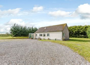 Thumbnail 5 bed detached house for sale in Lower Arboll, Portmahomack, Tain, Ross-Shire