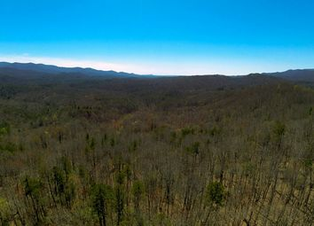 Thumbnail Land for sale in Blue Ridge, Ga, United States Of America