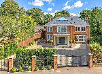 Thumbnail 7 bed detached house for sale in The Park, St Albans, Hertfordshire