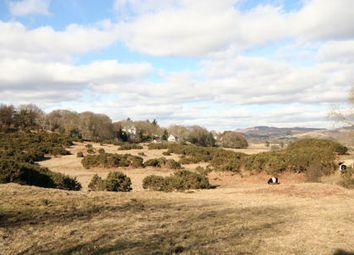 Thumbnail Land for sale in Bracken Wood, Gatehouse Of Fleet