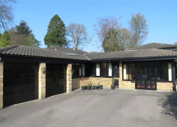 Thumbnail 3 bed semi-detached bungalow for sale in Kings Hill, Beech, Alton, Hampshire