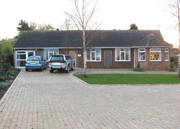 Thumbnail 4 bed detached bungalow to rent in Maids Cross Hill, Lakenheath, Brandon
