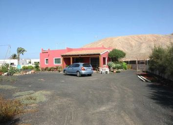 Thumbnail 3 bed villa for sale in Spain, Fuerteventura, La Oliva, Villaverde
