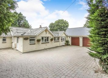 Thumbnail 4 bed bungalow for sale in Sandy Lane, Verwood