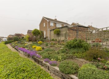 3 bed semi-detached house for sale in Broomfield Avenue, Hasland, Chesterfield S41