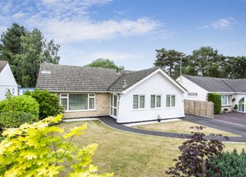Thumbnail 3 bed detached bungalow for sale in Maple Drive, Ferndown