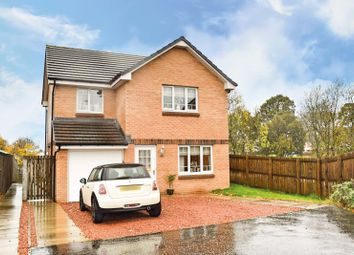 Thumbnail 4 bed detached house for sale in Wilkie Drive, Holytown