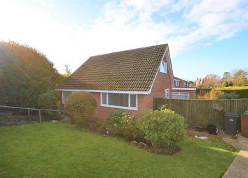 Thumbnail 3 bed detached bungalow to rent in Harrow Lane, St Leonards-On-Sea