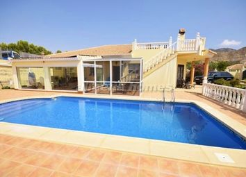 Thumbnail 3 bed villa for sale in Villa Belgica, Arboleas, Almeria