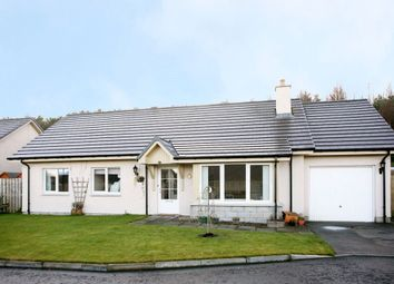 Thumbnail 3 bed detached bungalow to rent in Methlick Wood, Methlick, Ellon