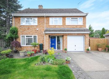 Thumbnail 4 bed detached house for sale in Redcastle Road, Thetford