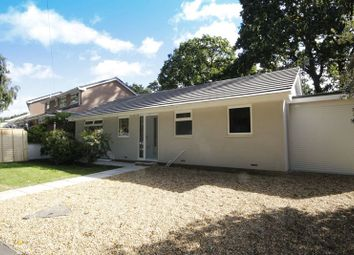 Thumbnail 3 bed bungalow for sale in Brookside Road, Bransgore, Christchurch, Dorset