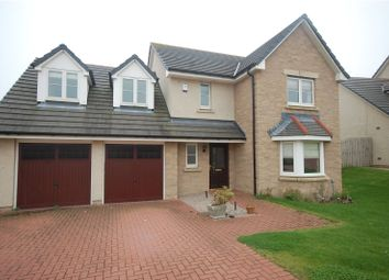 Thumbnail 4 bed detached house to rent in Schoolhill Drive, Portlethen, Aberdeen