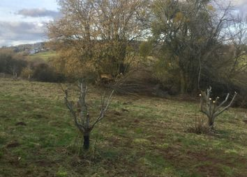 Thumbnail Land for sale in Much Birch, Hereford