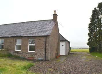 Thumbnail 2 bedroom semi-detached house to rent in Findowrie Cottages, Brechin, Angus