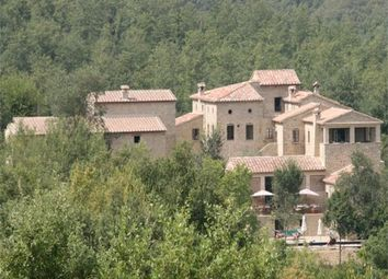 Thumbnail Hotel/guest house for sale in Casale Fiordaliso, Anghiari, Arezzo, Tuscany, Italy