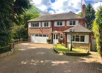 Thumbnail Studio to rent in Chester Road, Chigwell