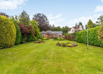 Thumbnail 3 bed bungalow for sale in Ranalegh, Clehonger, Herefordshire HR29Sh