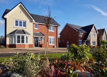 Thumbnail 4 bedroom detached house for sale in Hawkswood, Mill Lane, Calcot, Reading