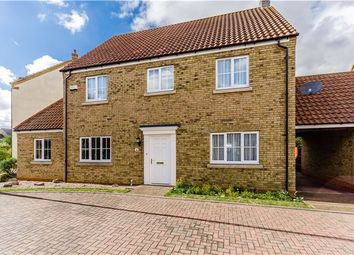 Thumbnail 4 bedroom detached house for sale in Alexander Chase, Ely