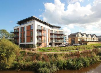 Thumbnail 2 bed flat to rent in Sycamore Avenue, Woking