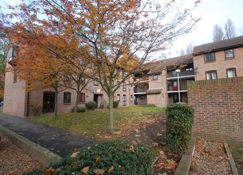 Thumbnail Studio to rent in Anstice Close, Chiswick