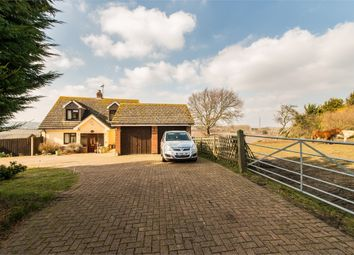 Thumbnail 5 bed detached bungalow for sale in Mill Lane, Hartlip, Kent.