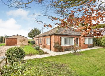 Thumbnail 4 bed detached bungalow for sale in Necton Road, Little Dunham, King's Lynn