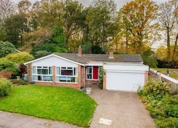 Thumbnail 4 bed bungalow for sale in Peace Grove, Welwyn