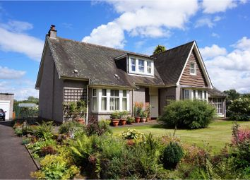 Thumbnail 4 bed detached bungalow for sale in Dundee Road, Blairgowrie