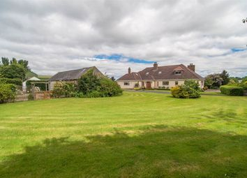 Thumbnail 7 bed detached house for sale in 164, Ballynahinch Road, Lisburn