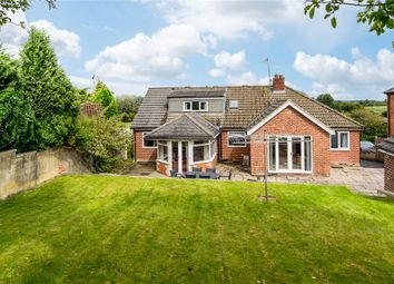 Thumbnail 5 bed detached bungalow for sale in Meadow Court, Littlethorpe Lane, Ripon, North Yorkshire
