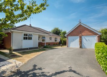 Thumbnail Detached bungalow for sale in Pinhoe Drive, Haverhill