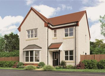 "Thumbnail 4 bed detached house for sale in ""Mitford"" at Loxley Road, Wellesbourne, Warwick"