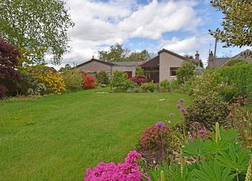 Thumbnail 3 bed cottage for sale in Longleys, Meigle