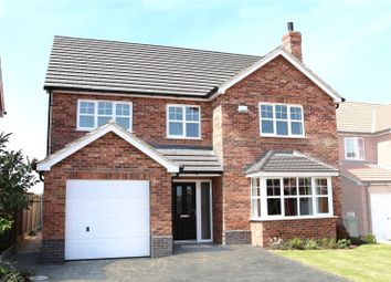Thumbnail 5 bed detached house for sale in Plot 259, The Duchess, Falkland Way, Barton-Upon-Humber, North Lincolnshire