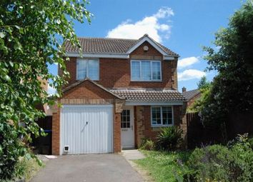 Thumbnail 3 bed detached house to rent in Polar Star Close, Timken, Daventry